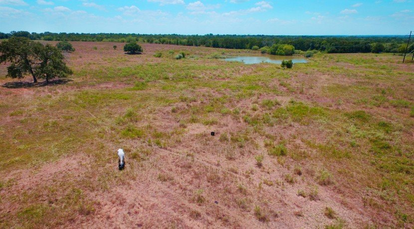 018_Aerial Horse and Front Pond